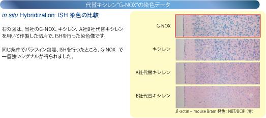 in situ Hybridization: ISH染色の比較 当社のG-NOX、キシレン、A社B社代替キシレンを用いて作製した切片で、ISHを行った染色画像です。 同じ条件でパラフィン包埋、ISHを行ったところ、G-NOXで一番強いシグナルが得られました。